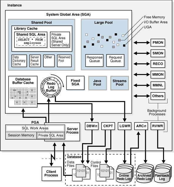 Introduction About Oracle Database